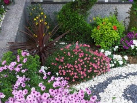 Park-Bahçe |  -  -  - Peyzaj Projelendirme ve Uygulama